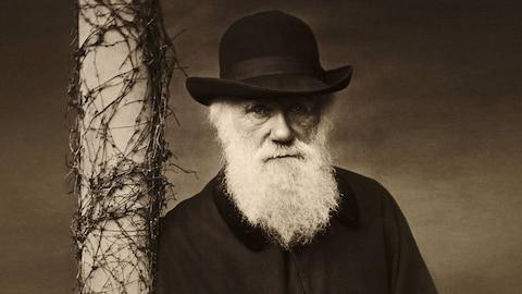 Questioning Darwin (HBO)
