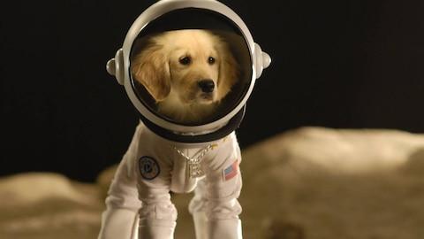Space Buddies (HBO)