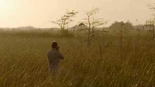 Everglades: A Fight for Glory