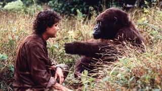 Congo (HBO)