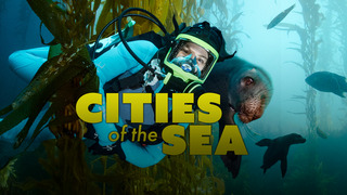 Cities of the Sea