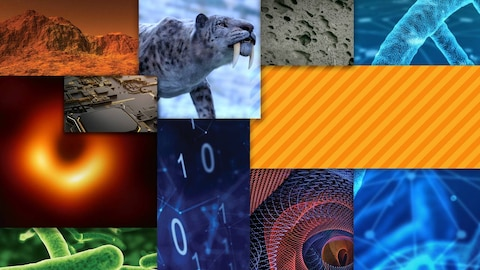 Top Science Stories of 2019