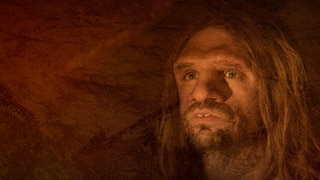 Who Killed The Neanderthal? - Ex
